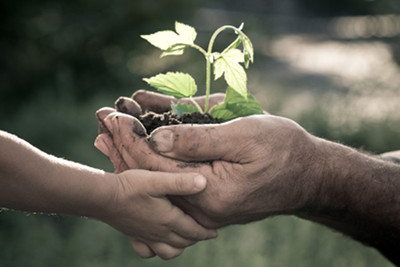 Image of a seedling being passed from one generation to the next, used under license from https://www.123rf.com/profile_yarruta