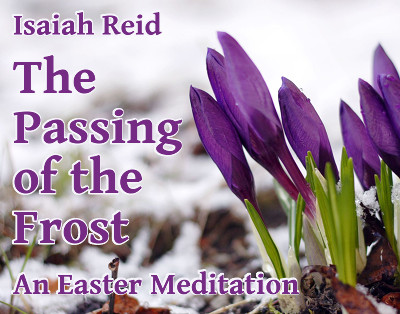 Article Title over a photo of crocuses emerging from the melting snow.