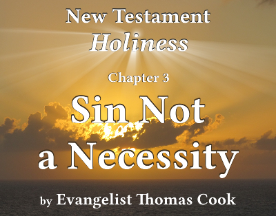 Graphic for the title of this chapter, 'Sin Not a Necessity', part of the book 'New Testament Holiness' by Thomas Cook