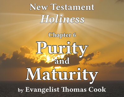 Graphic for the title of this chapter, 'Purity and Maturity', part of the book 'New Testament Holiness' by Thomas Cook