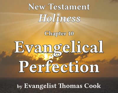 Graphic for the title of this chapter, 'Evangelical Perfection', part of the book 'New Testament Holiness' by Thomas Cook