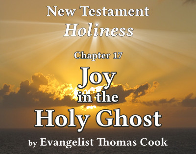 Graphic for the title of this chapter, 'Joy in the Holy Ghost', part of the book 'New Testament Holiness' by Thomas Cook