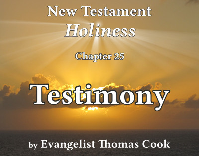 Graphic for the title of this chapter, 'Testimony', part of the book 'New Testament Holiness' by Thomas Cook