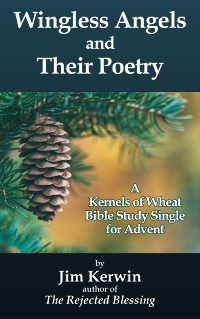 Cover the e-booklet 'Wingless Angels and Their Poetry' by Jim Kerwin
