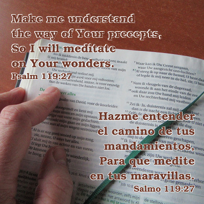 The text of Psalm 119:27 (in Spanish and English) appears over a photo of the Bible