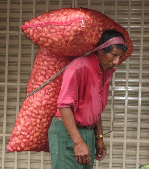 Photo of a Peruvian man carrying two enormous sacks of potatos, one on his back, the other on his shoulders, all supported by a strap passing around his forehead